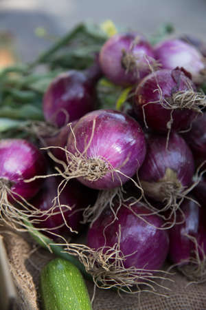 Bunches of Organic Purple Onions With Roots For Sale at the Farmers Market