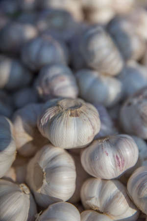 Fresh Garlic For Sale at the Farmers Market Stock Photo