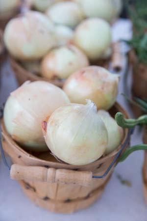 White Organic Locally Grown Onions in Brown Baskets at the Farmers Market Stock Photo