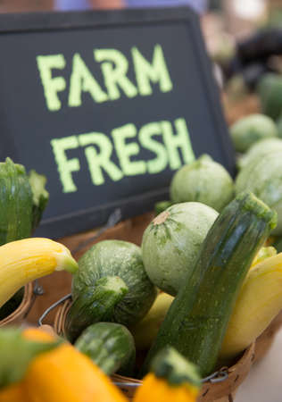Farm Fresh Green and Golden Zucchini and Calabacitas at the Farmers Market