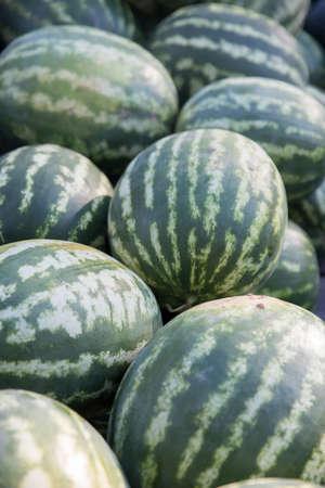 Organic Locally Grown Watermelon Stock Photo