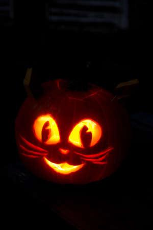 Kitty Cat Halloween Pumpkin