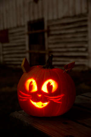 Kitty Cat Jack-O-Lantern on a Picnic Table With Barn Stock Photo - 23193561