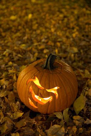 Laughing Halloween Pumpkin in Newly Fallen Leaves