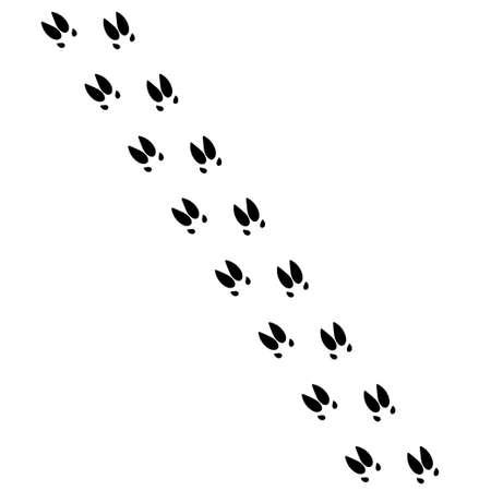 Pig trail vector. Pig imprint icon vector illustration