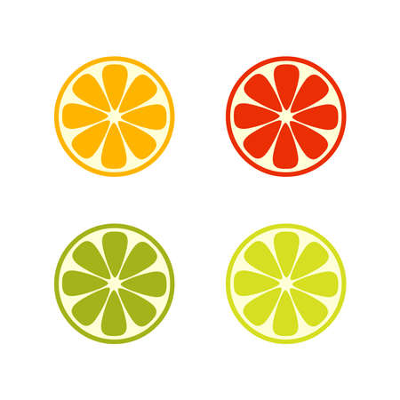 Vector citrus slices isolated on white background