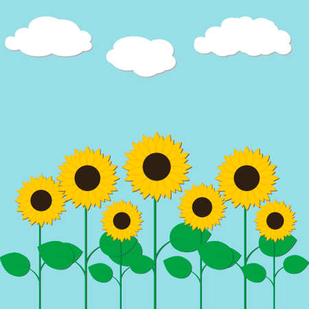 Vector illustration with sunflowers and clouds