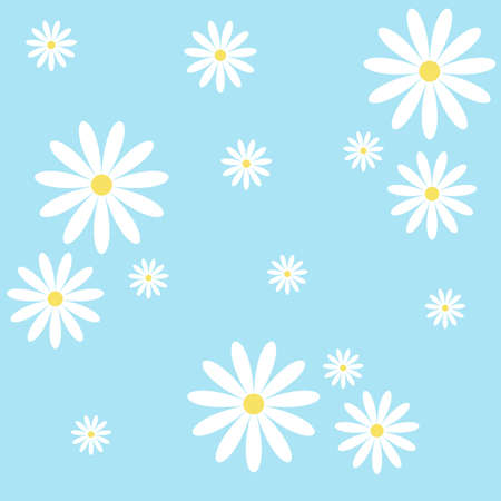 Camomile on blue background, vector illusnration