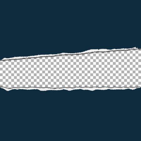 Torn paper on transparent background. Vector illustration