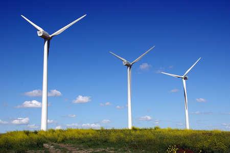 molino de viento - recursos energ�ticos futuros Foto de archivo - 247028