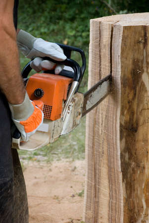 Powerful Chainsaw in Action - Creating Sculpture out of Wood Trunk photo