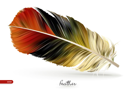 Realistic feathers - vector illustration. Isolated on white background. Eps10. Illustration