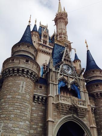 wish: Cinderellas castle
