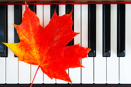 Close up view of autumn red leaf on piano keys (background, concept) Stock fotó