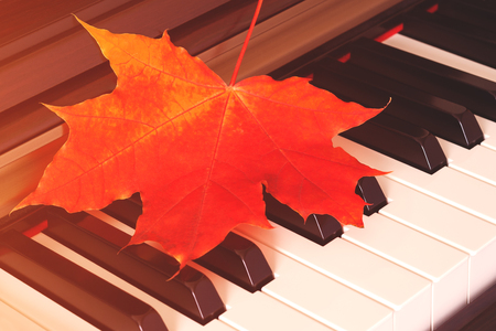 Close up view of autumn red leaf on piano keys (background, concept, toned)