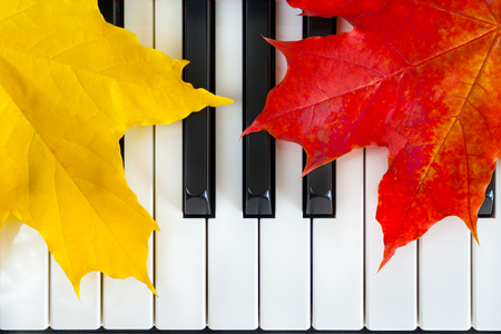 Close up view of autumn leaves on piano keys (background, concept)