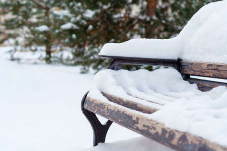 Close up view on the snow covered wooden bench in the winter park