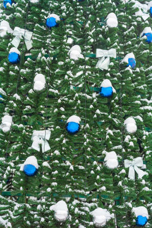 Blue and silver balls on the Christmas tree covered by snow