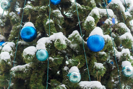 Close up view on blue balls on the Christmas tree covered by snow 版權商用圖片