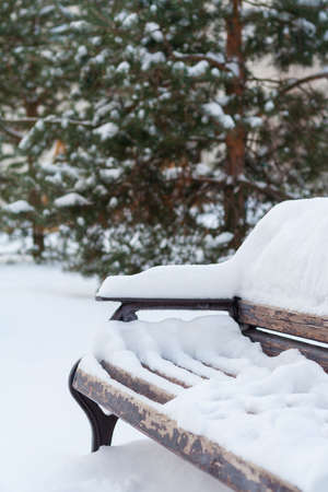 View on the snow covered wooden bench in the winter forest
