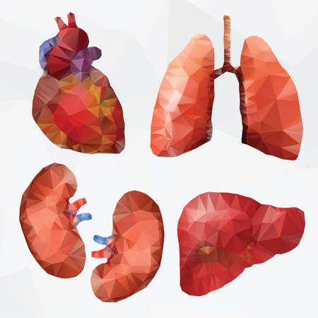 Medical icon set - polygonal style Vector
