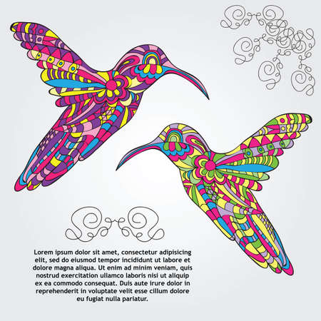 Vector card with Hummingbird - doodle pattern style Vector