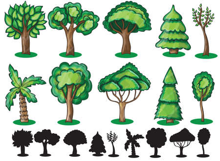 Trees and Silhoutte of trees on a white background Vector