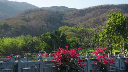 Viewing platform at mountaintop, in chongqing nanshan. Tropical garden in China
