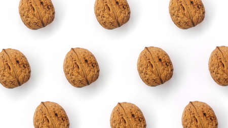 Walnuts lie in rows on white. Top view. Hard light Reklamní fotografie