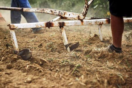 plough: Man run after the plough Stock Photo