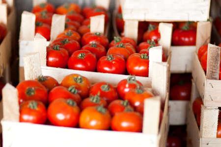 bazar: fresh tomatoes at bazar