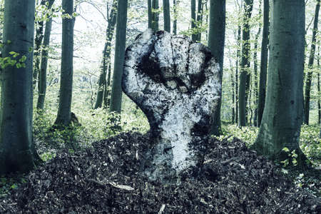 dirty fist raising up over the soil in front of forest Banque d'images