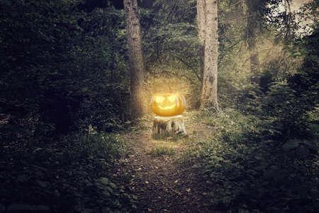 darken: Shiny halloween Jack-o-Lantern pumpkin standing on a tree trunk at darken forest