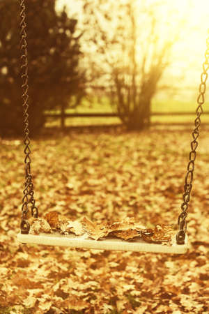 dreary: Empty swing with leaves in the autumn season with sunlight