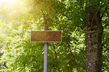 sign post: Grunge sign post in front of green nature environment