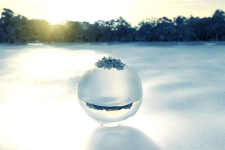 3d rendering of crystal ball on snow in front of forest clearing the evening sunlight