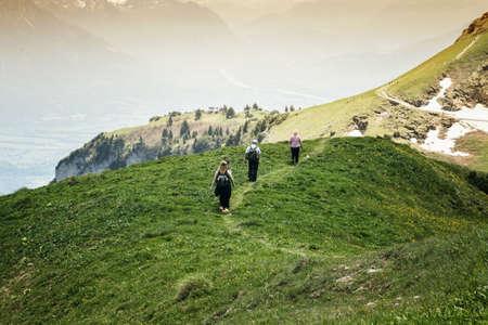 rheintal: Group of hikers walking at the top of the Rhine valley