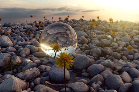 3d rendering of crystal ball on pebble stones in the evening sunlight