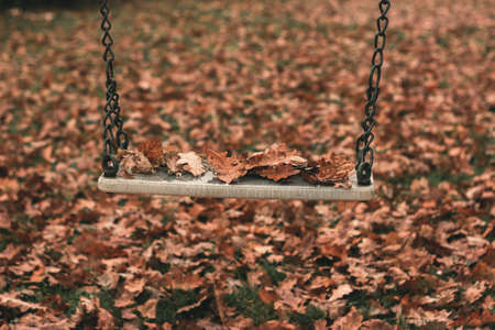 Empty swing covered with leaves in the autumn season