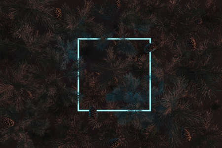3d rendering of cyan square neon light with pine needles and twigs. Flat lay of minimal nature style concept
