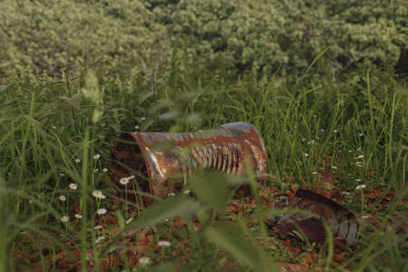3d rendering of rusty tin can laying on grass Archivio Fotografico