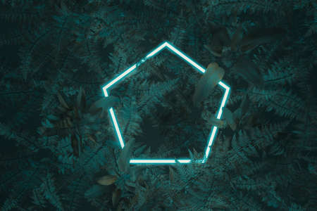 3d rendering of white hexagon with neon light covered by fern leaves. Flat lay of minimal nature style concept Archivio Fotografico