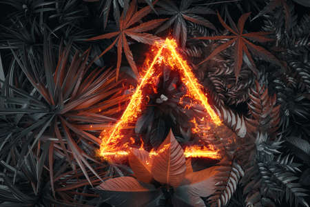 3d rendering of triangle shape in fire over tropical plants. Flat lay of minimal nature style concept