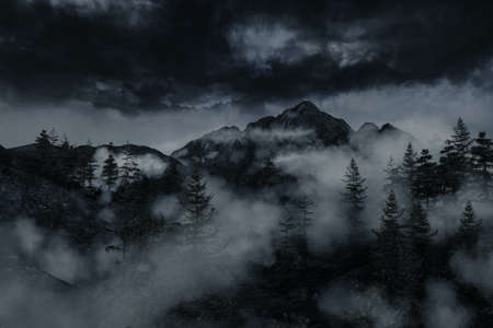 3d rendering of foggy mountain surrounded by pine trees in front of overcast sky