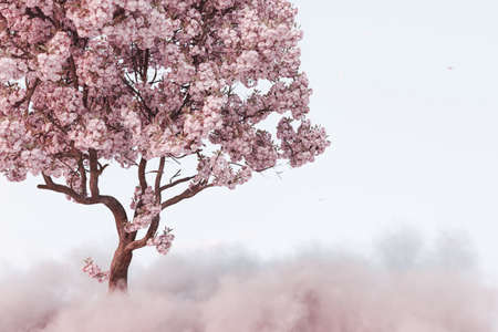 3d rendering of japanese cherry tree on fluffy clouds
