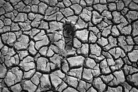 Single imprint of a bare human foot on a cracked dry muddy underground Imagens