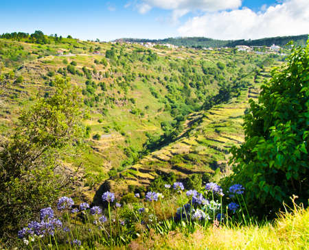 Wide view over the unique, mountainous terraced landscapes of Madeira, Portugal, Europe