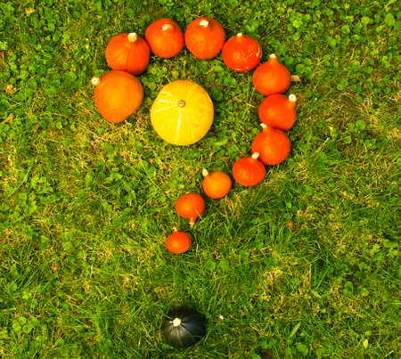 Many orange pumpkins laying in the grass, forming an interrogation mark