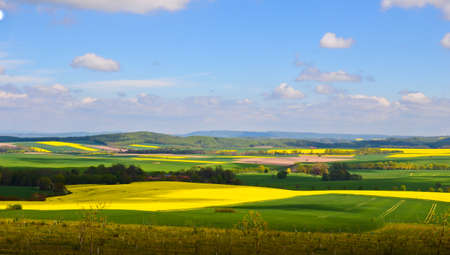 A beautiful german agriculture landscape with light and yellow rape fields