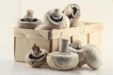 reported: mushroom
